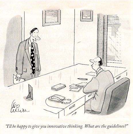 Innovation guidelines cartoon.