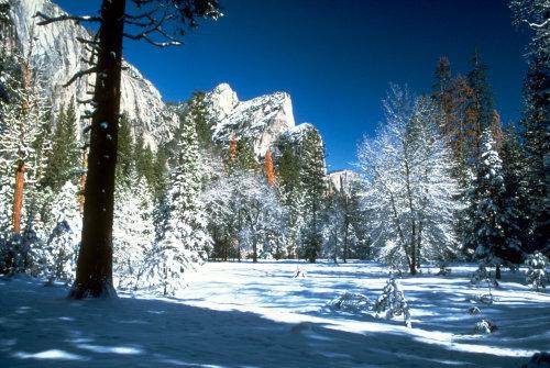 Winter time at Yosemite National Park