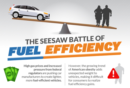 Obesity and Fuel Economy