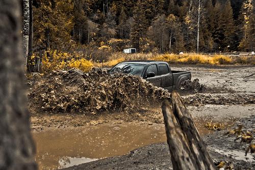 Off-Roading in Canada - Toyota Tacoma Muddin' Picture